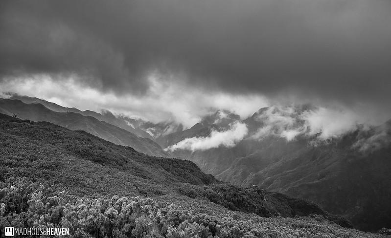 Madeira - 0291-HDR