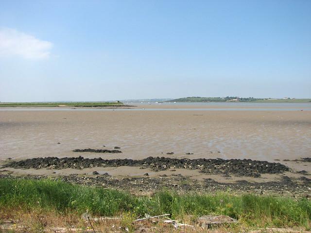 The Saxon Shore Way on Nagden Marshes