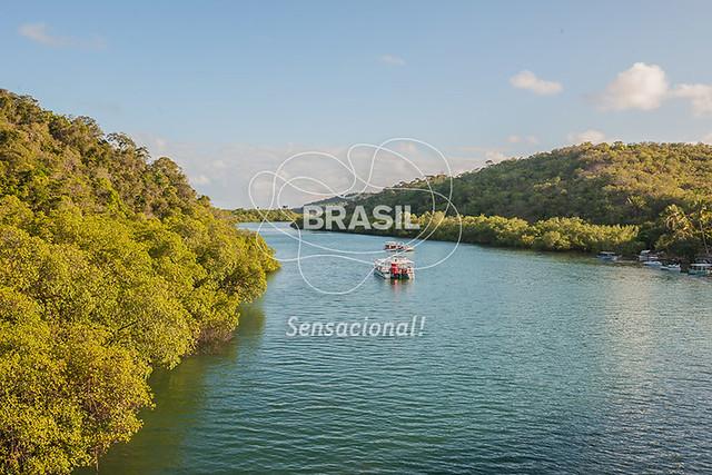 NE_PraiadosCarneiros0016