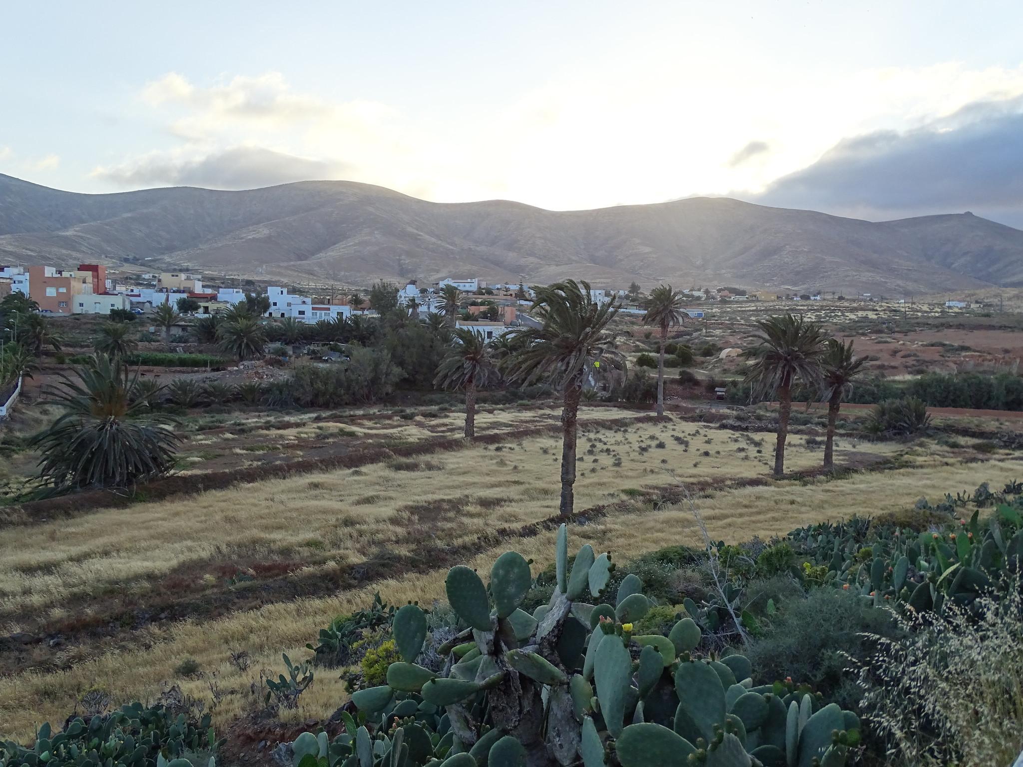 Antigua Municipio Isla de Fuerteventura