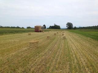 Straw bales in the field | by adkfarmerdan