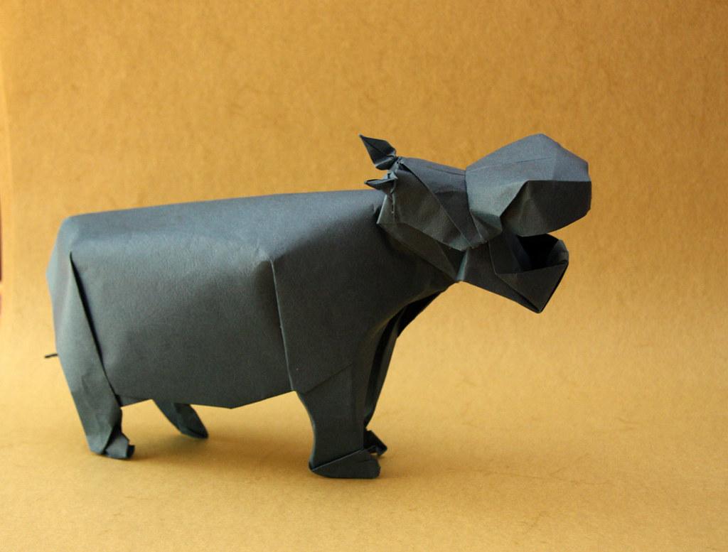 Hippo (Steven Casey) | Happy Folding | 777x1024