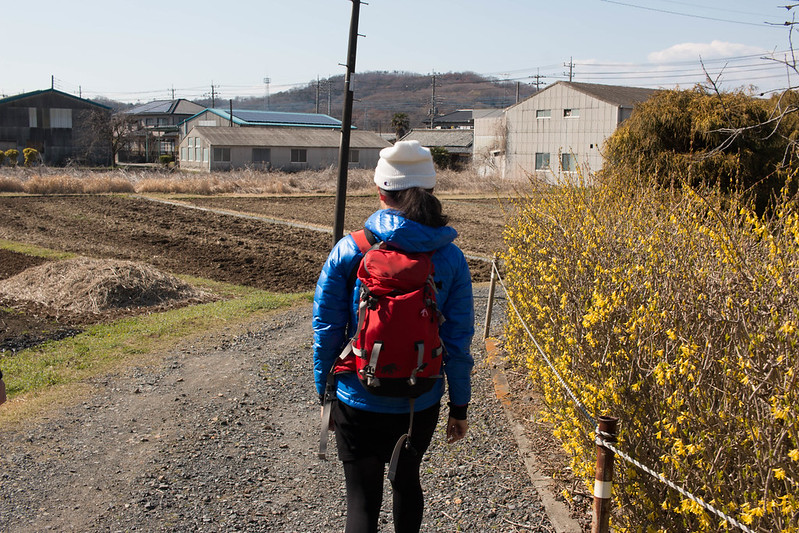 20160326-三毳山-0468.jpg