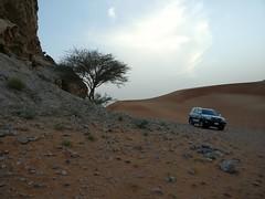 Dune crawler