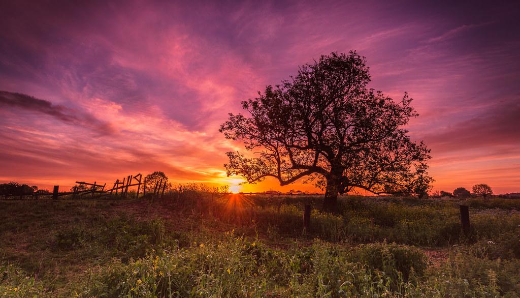 Sawley Sunrise