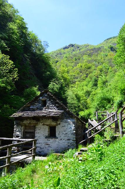 Die alte Mühle im Kastanienwald kurz vor Corippo