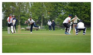 Cricket 15 | by fransmartens667