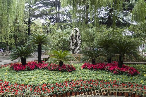 asia china jinan people shandong sonyrx100iii garden geology karst nature park chn
