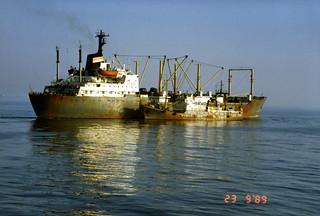 Neuvostoliittolaisia kalastusaluksia Porkkalan mutkassa