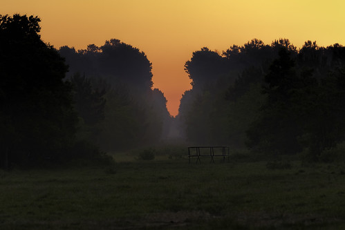 80d canon ef100400mmf4556lii eos morning naturalbeauty naturallight nature outdoor sunlight sunrise tarkington texas topazlabs fog libertycounty southeasttexas