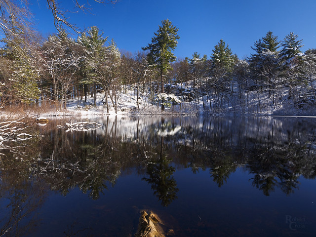 Snowy Springtime Reflections
