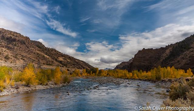 Fall colour along the river
