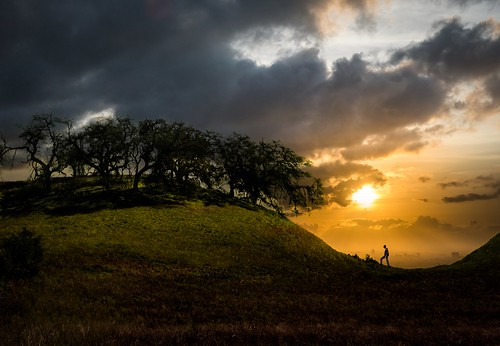 adventure climb clouds forest grass hike hill meadow pasture silhouette summer sunset trees up walk