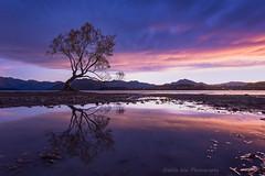 Good morning, New Zealand
