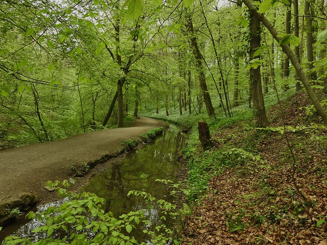 Skipton Castle Woods in Skipton, North Yorkshire, England - May 2017