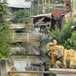 Chiang Mai VM (7)