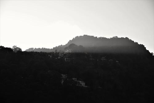 fog landscape mountain dawn trees light sunset mist outdoors outdoor silhouette travel backlit monochrome blackandwhite hill sky nature valley city rock nainital nikon d610 610 dusk