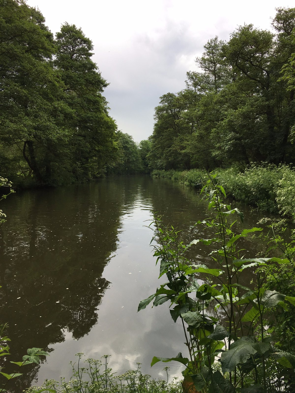 River Wey