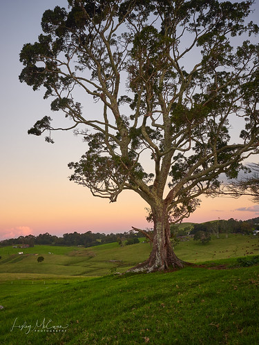 sunrise field farm hill