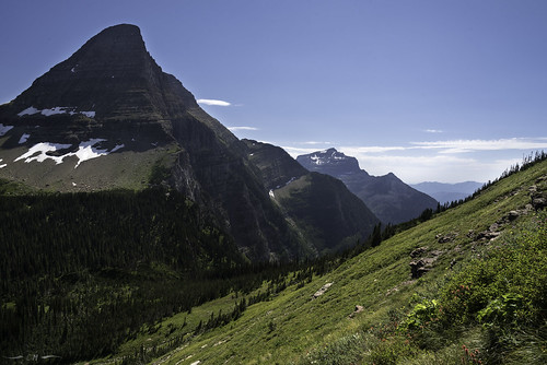 bearhat bearhatmountain glacier glaciernationalpark landscape montana nationalpark northernrockies rockymountains usnationalpark afternoon afternoonlight alpine mountains summer wildflower wildflowers
