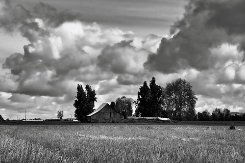 barn blackwhite capturenx2edited cloudsindistance countryside day3willamettecannonbeach grassyfieldblueskieswithclouds landscape lookingne nature nikond90 oldbarn oregoncountryside outside portfolio project365 silverefexpro2 trees independence oregon unitedstates