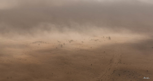 The Sand Storm | by robysaltori