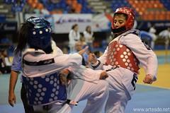 20170428 Torneo Estudiantil de Taekwondo