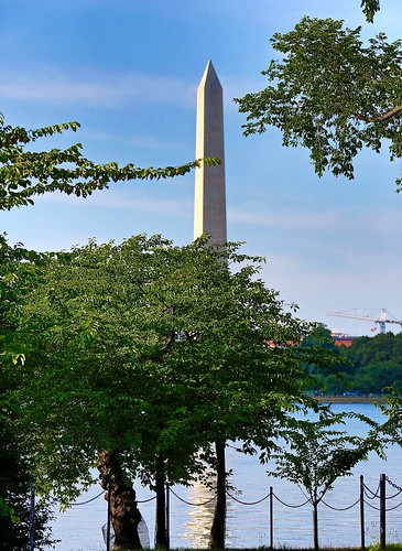 washingtondc washingtonmonument tidalbasin