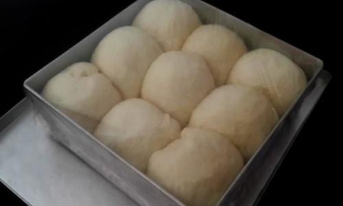 Dough balls after rise