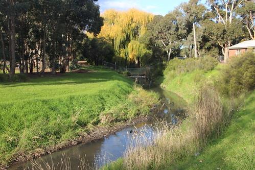 Martin Reserve, Hadfield - 100 photos of Merlynston Creek