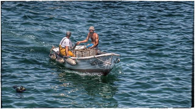Fishermen at Cascais