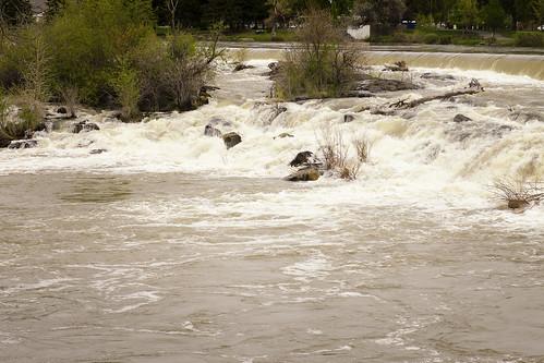 idaho falls river west western us usa water landscape snake