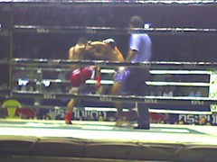 Thai Boxing (Muay thai) in Bangkok | by sachilefever_twinf