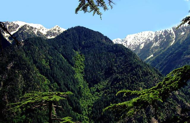Palas Valley,Kohistan