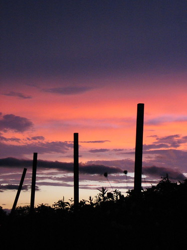 sunset colors silhouette canon amazing farm pa s410 martinscreek
