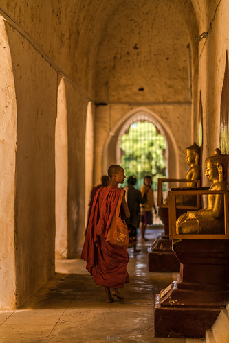 Burmese Monk | by tehhanlin