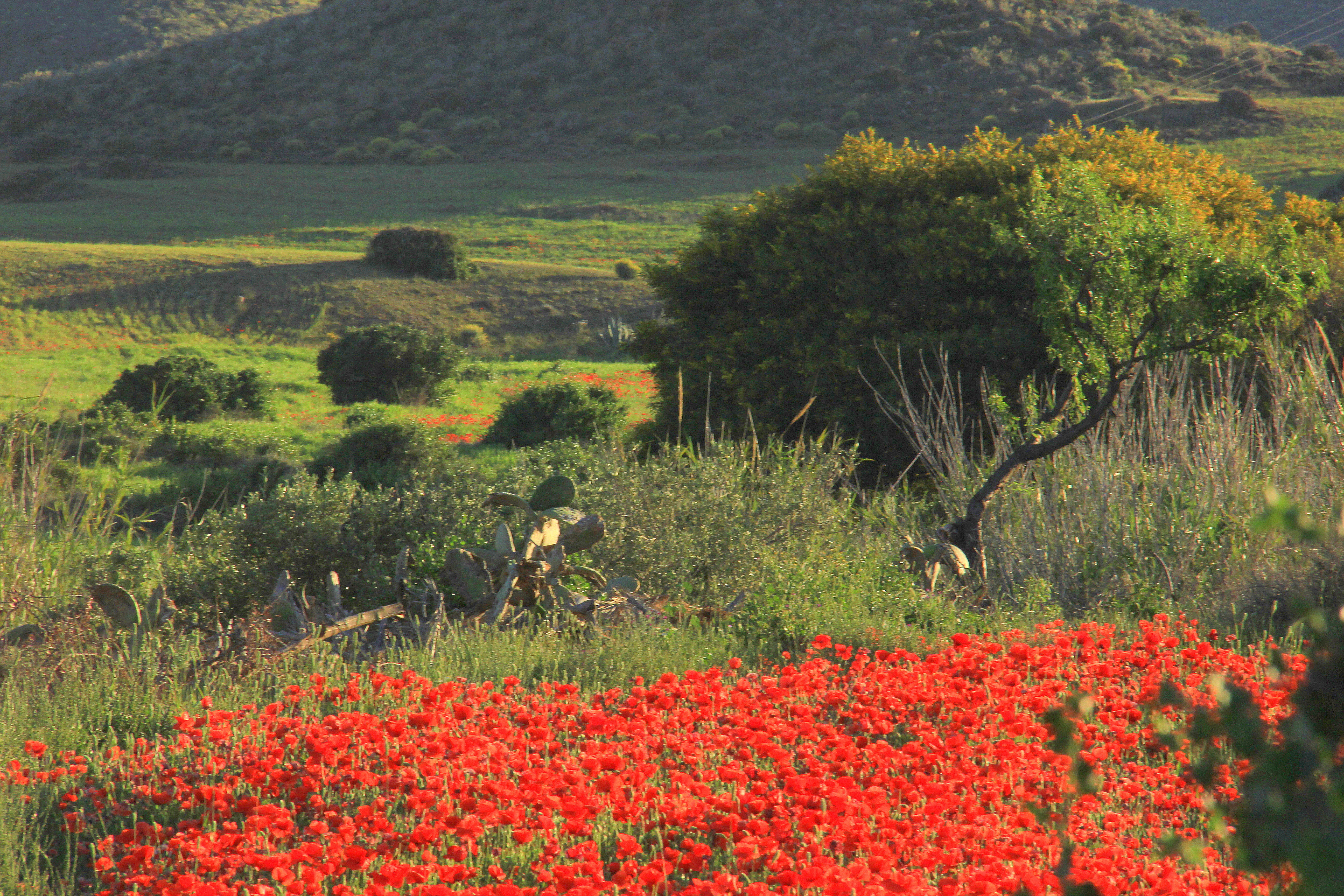 Almeria has beautiful natural beauty