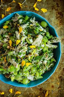 Chicken Tarragon Salad from HeatherChristo.com   by Heather Christo