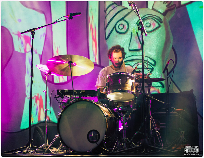 Animal Collective-15.jpg