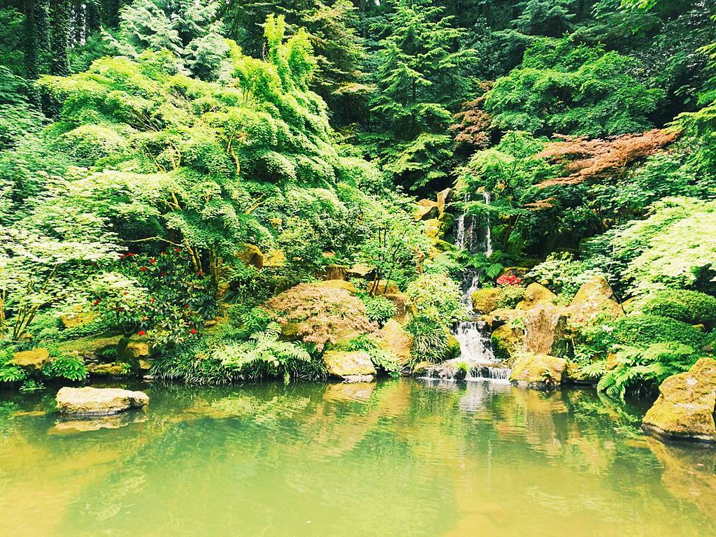 Lovely day to roam the portland japanese garden pdx vsc - Portland japanese garden free day ...
