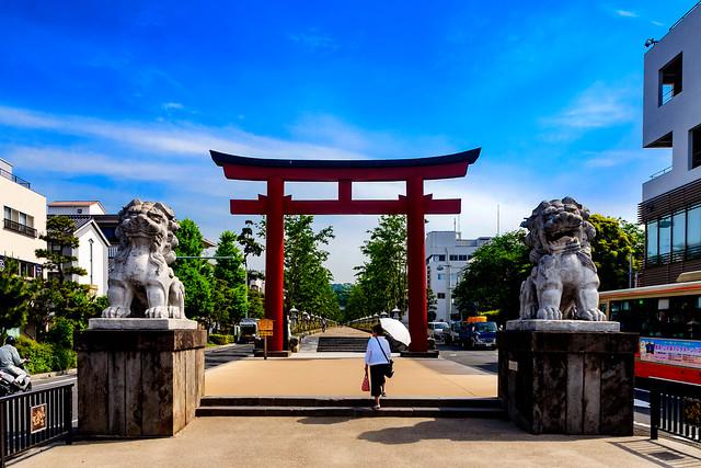 The approach of Tsuruoka Hachimangu Shrine : 鶴岡八幡宮参道