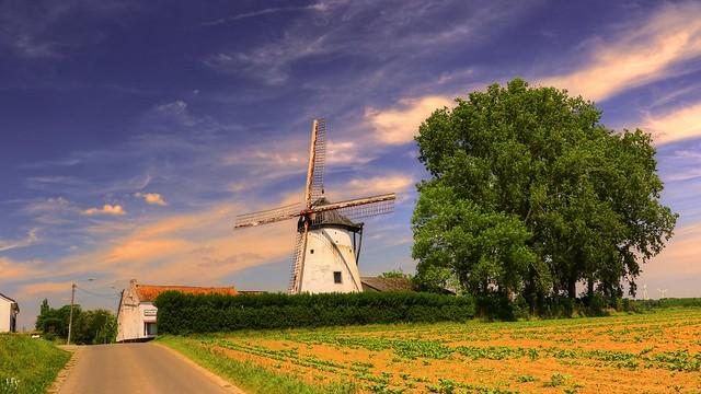 Windmill (BE)