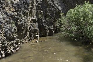 Sinker Creek