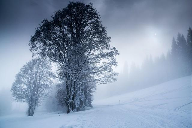 Haute Savoie, Mont-Blanc, 10