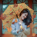 319/365 Autumn in the afternoon by Katrina Yu