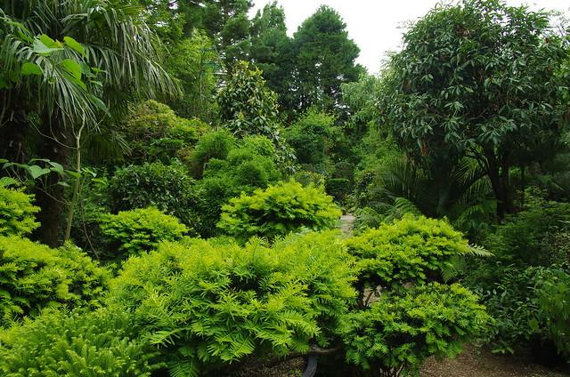 Le Jardin Agapanthe, 5/6/2017