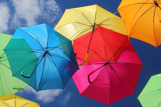 Envolée de couleurs. / Flight of colors.