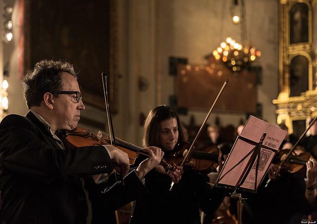 Violins El Messies