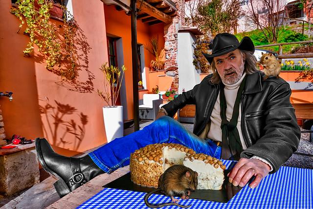 Two predators, one clandestine and the hazelnut cheesecake