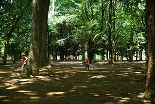 Daylight@Yoyogi park@Tokyo_04